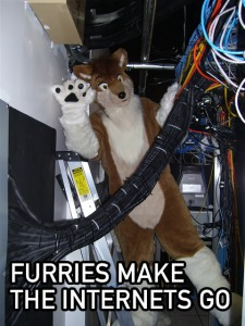 Furry Internetz